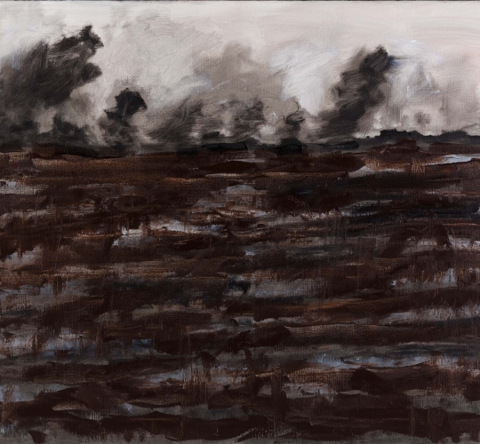 Battlefields no.7 – 100x120cm / 2012