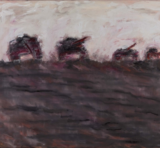 Battlefields no.13 – 100×120 / 2012