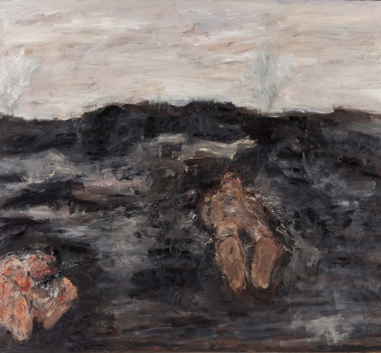 Battlefields no.15 – 140x160cm / 2012